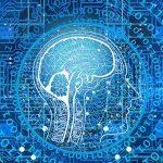 Contratos y licencias de derecho de autor en el entorno digital