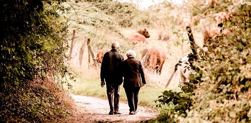 Abogados especialistas en jubilaciones y pensiones