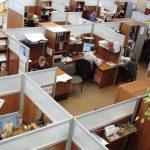 Medidas sociales en defensa del empleo